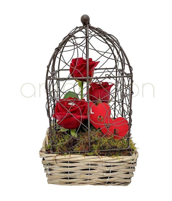 Φυλακισμένος Έρωτας
