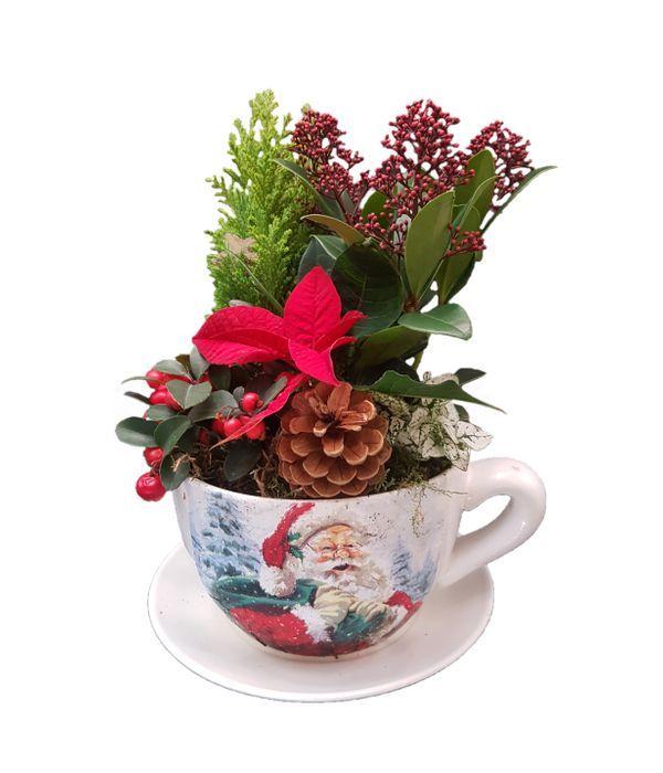 Χριστουγεννιάτικη Κούπα με Φυτά