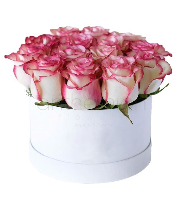 Δίχρωμα τριαντάφυλλα σε λευκό κουτί