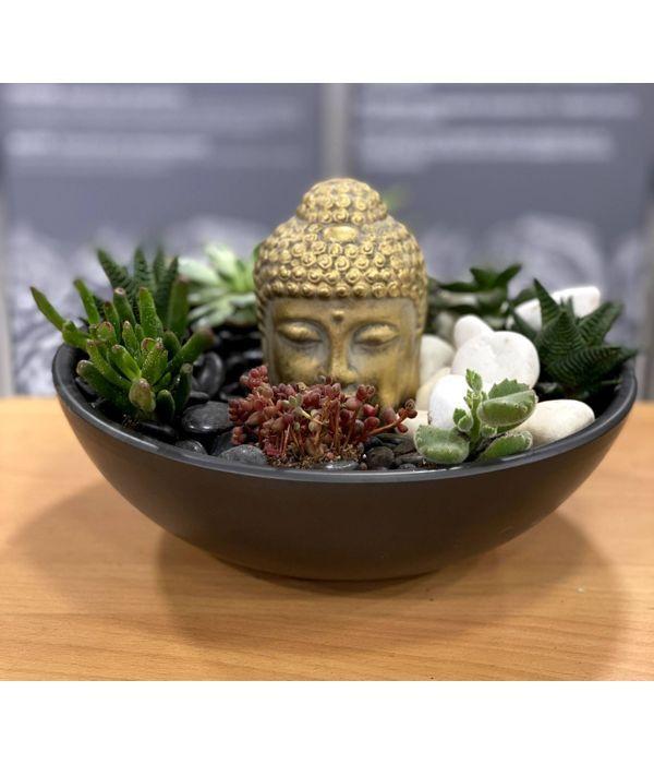 Υπέροχη Σύνθεση παχύφυτων με Βούδα