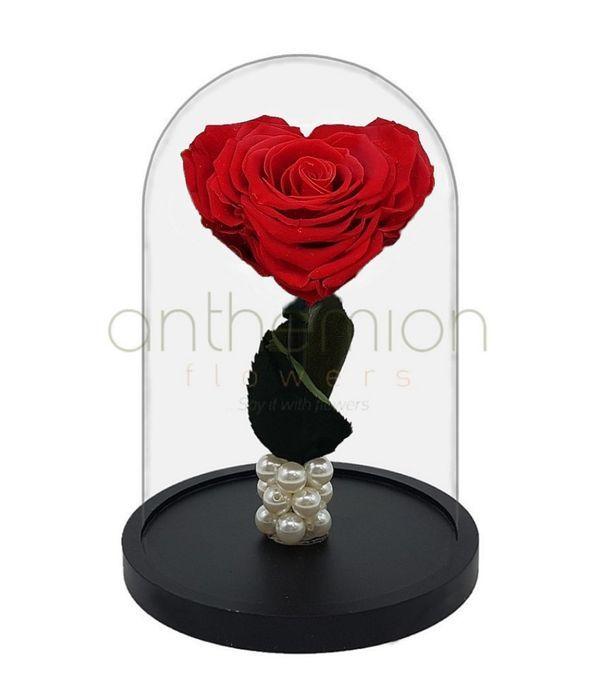 Καρδιά τριαντάφυλλο - Forever Rose (XL μέγεθος)