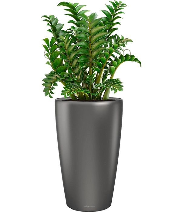 Rondo Tall self-watering pot