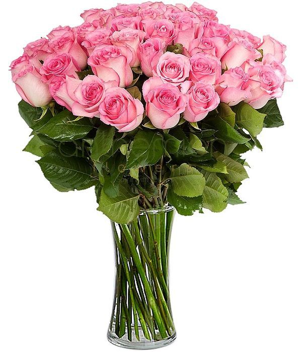 Bouquet of 80 pink roses