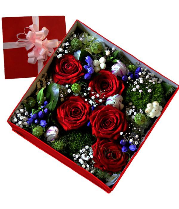 Red and lilac flowers in floral box