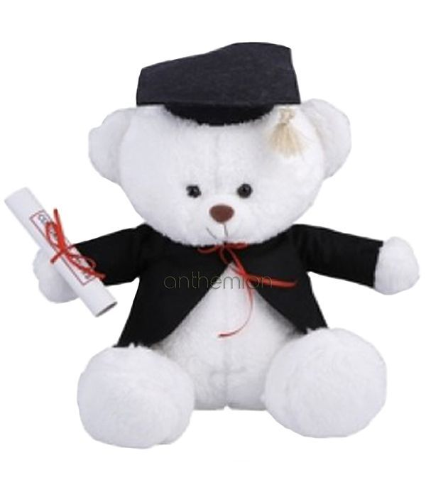 Graduation teddy bear 30cm