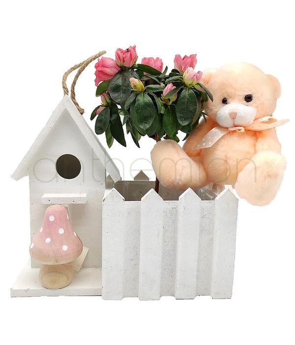 House plant and teddy bear