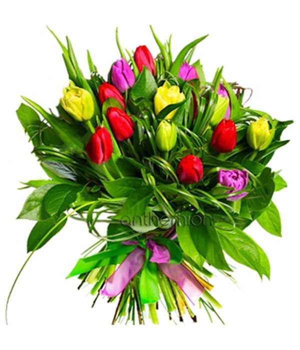 Tulips in a bouquet