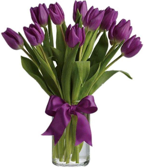 Αποστολή λουλουδιών με μωβ τουλίπες σε βάζο