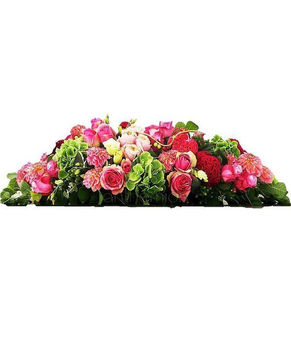 Colourful arrangement